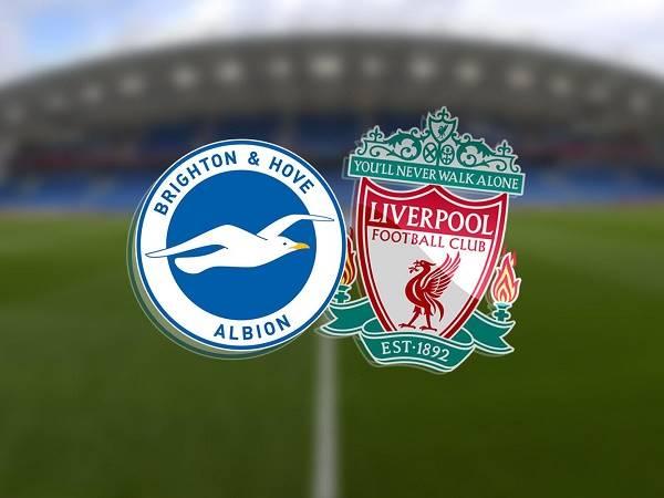 Soi kèo Brighton vs Liverpool 02h15, 09/07 - Ngoại Hạng Anh